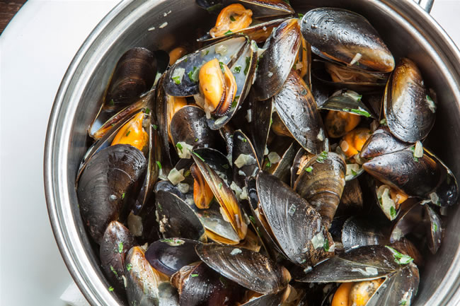 Head chef Philip Coulter's menu showcases the best possible seafood