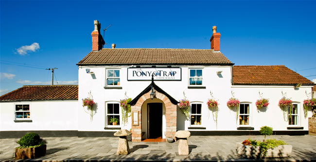 Josh is Chef Patron of multi-award winning pub the Pony & Trap in Chew Magna. Image credit  Jon Craig