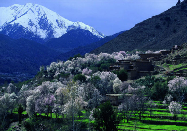 Valley-of-Ourika-Morocco
