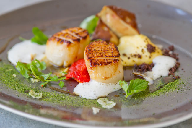 hand dived west coast scallops