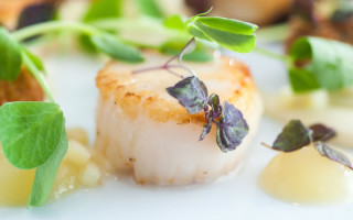 scallops at glazebrook house hotel