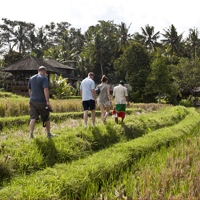 Bali: Discover Recover