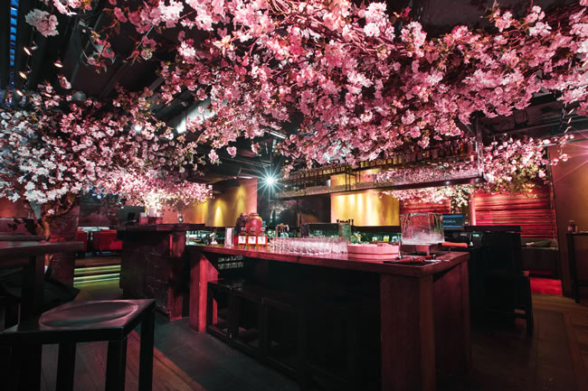 The Shochu Lounge at ROKA Charlotte Street, London