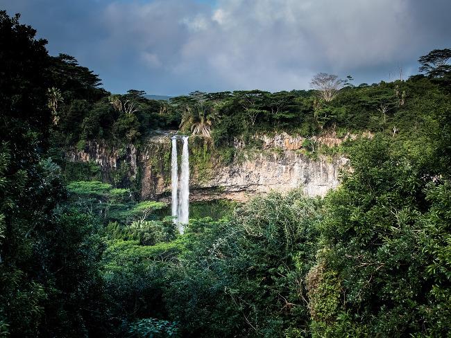 waterfall / rainforest