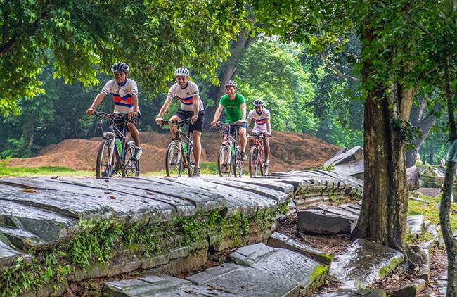 Grasshopper Bike Tours