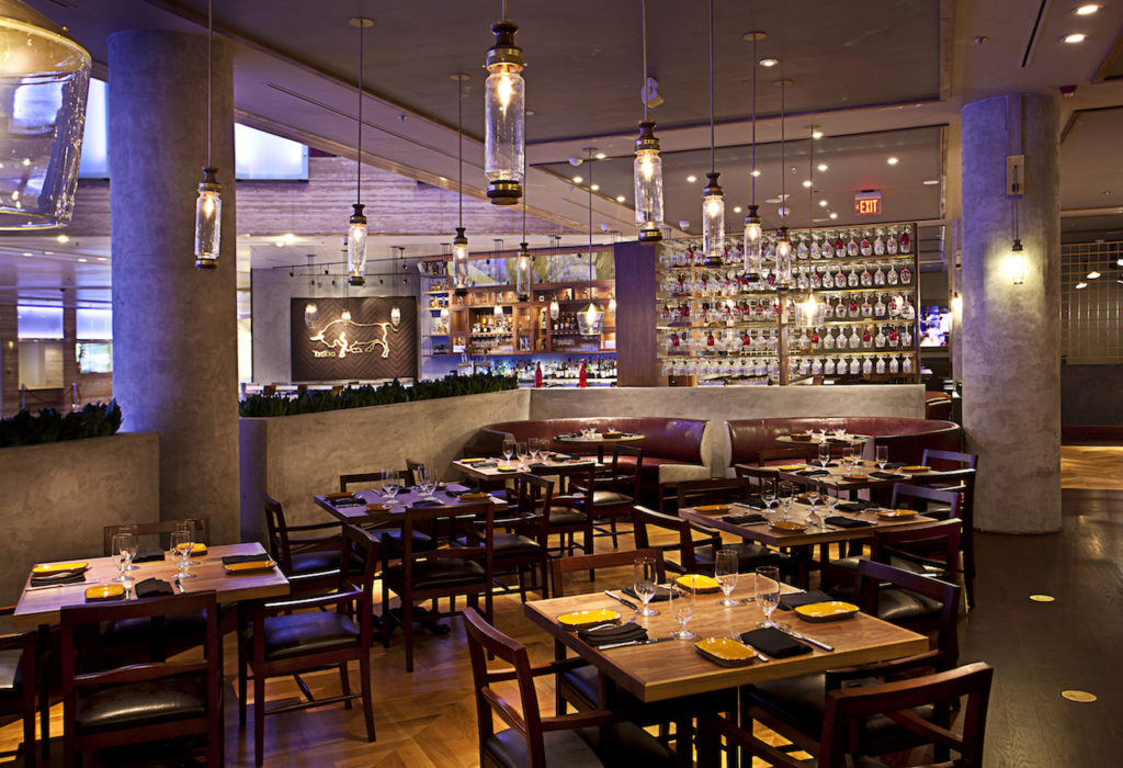 Toro Toro Dining Room - credit Michael Pisarri