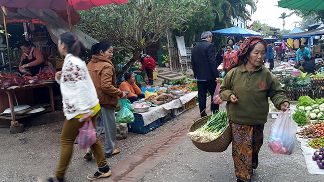 A Day at the Morning Market in Luang Prabang