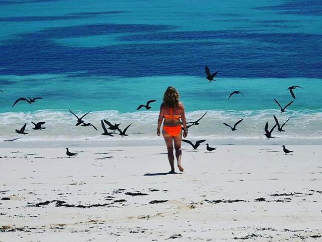 Kate Morfoot at Bird Island