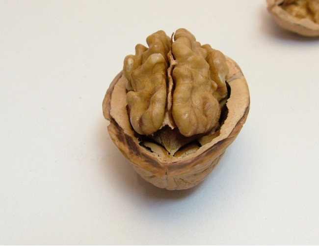 Walnuts are beneficial to the brain. Image Credit: pixabay.com