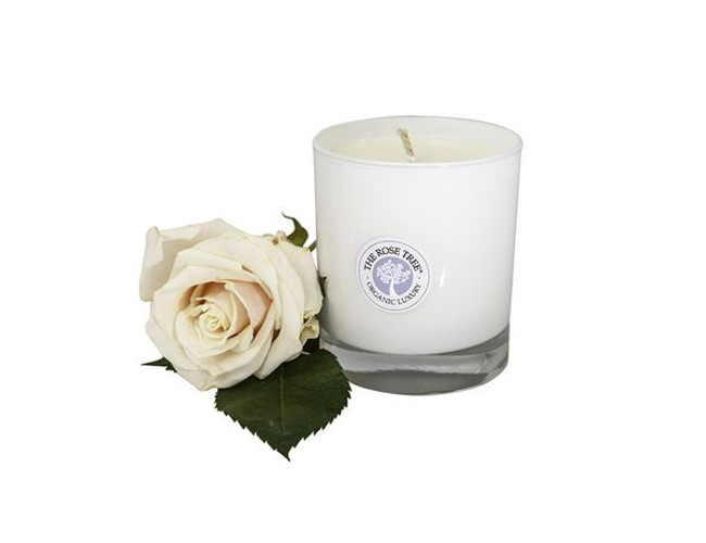 The Rose Tree No.5 candle blends citrus with lavender and fresh rosemary.