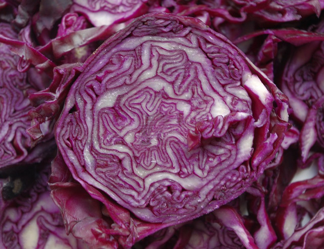 Use red cabbage instead of bread for your sandwiches. Image credit: pixabay.com.