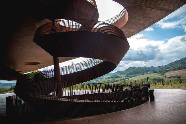 The Antinori family has been involved in the production of wine for over six centuries