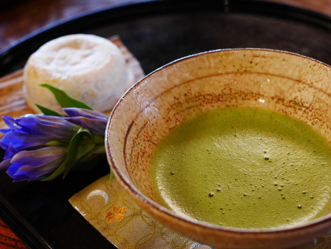 Matcha is a traditional powdered green tea made from the fresh leaf tips of the tea plant