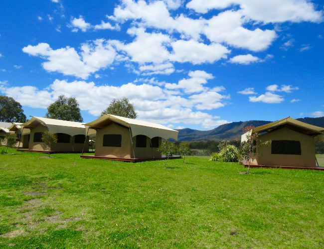 Spicers Peak Lodge Eco-Canopy