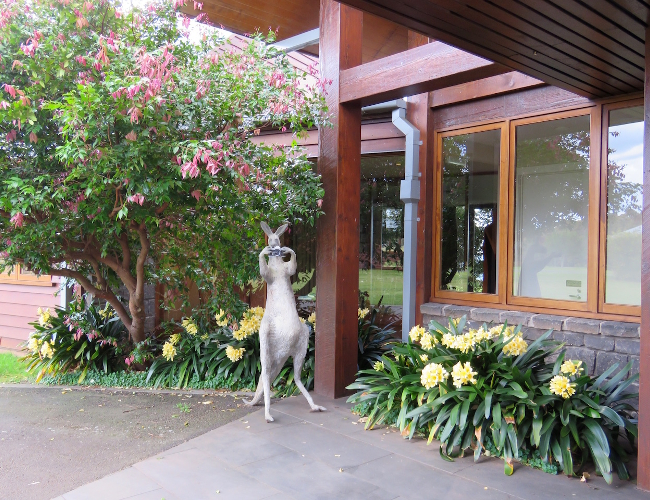 Spicers Peak Lodge Skippie kangaroo