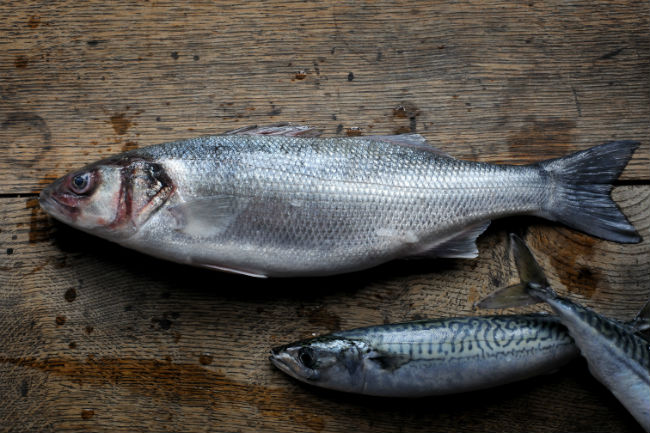 Fresh-fish-Barbican-Kitchen