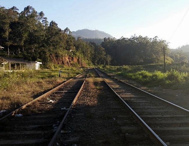 Amba Ella train tracks
