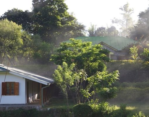 Amba Farmhouse & Mini factory (credit Amba) copy