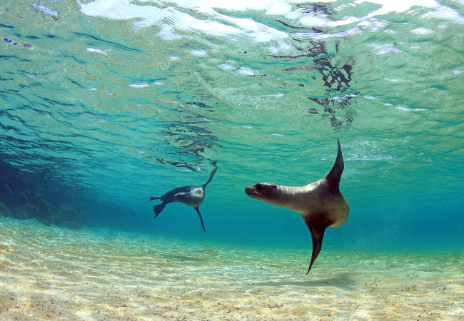Discover the Unspoilt Galápagos