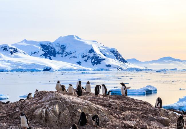 Explore the Antarctica in All-Inclusive Ultra-Luxury