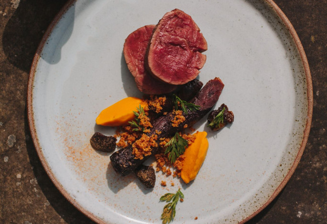 Food beef, carrot, prune
