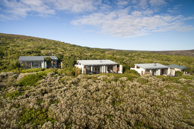 Grootbos Private Nature Reserve in South Africa