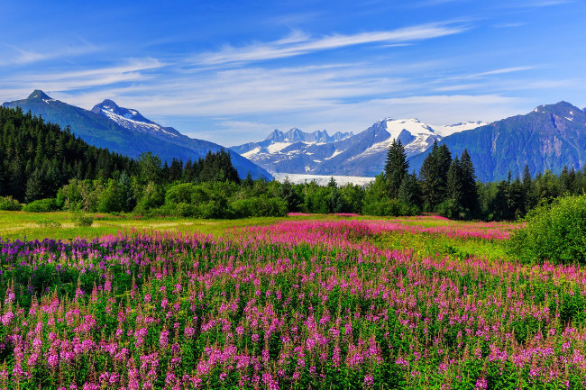 1) Alaska by Land & Sea with Holland America_preview