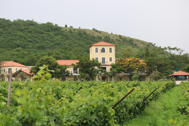 The Source at Sula through Vineyards