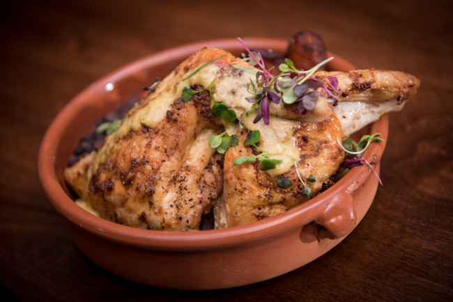 Restaurant Review: Havana 1920 Driving Cuban Cuisine Cravings in