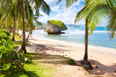 Bathsheba_beach
