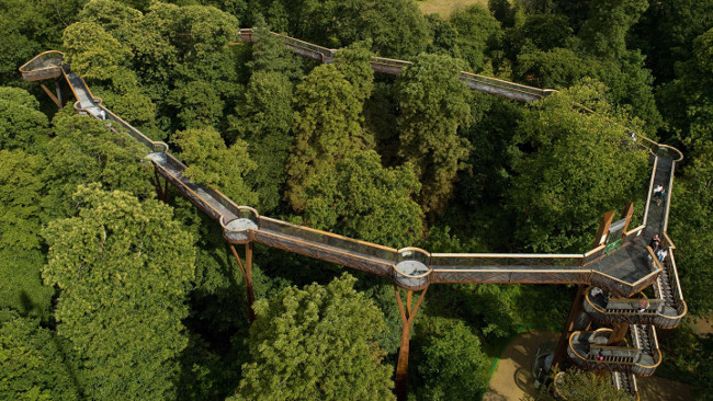 aerial-view-of-the-treetop-walkway