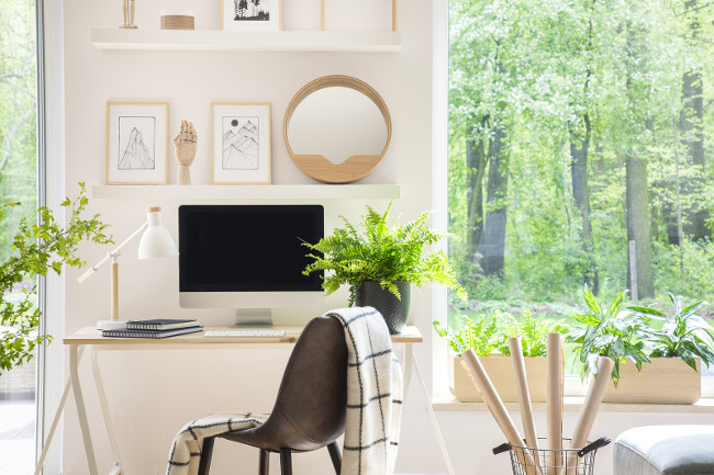 Wooden chair at desk with lamp and desktop computer in home office interior with plants. Real photo