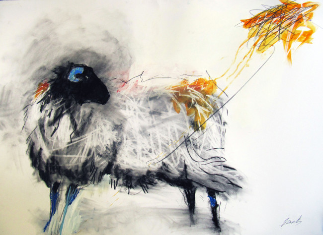 Valentia Sheep Margo Banks, up and coming artisti