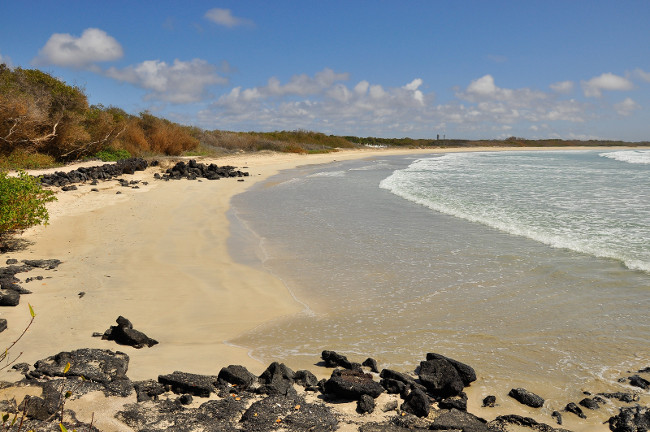 A view of the beach of the island of Isabela, on the Galapagos Islands, Ecuador