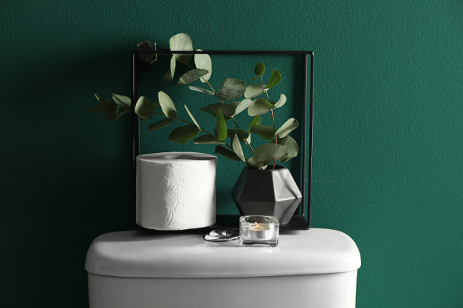 Decor elements and paper roll on toilet tank near green wall. Bathroom interior