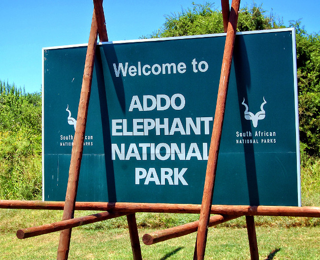 Sign of Addo Elephant National Park. Greeting billboard. African wildlife. Sweet memories of travel to Africa and African safari. South Africa, Addo Elephant National Park - January 2, 2013