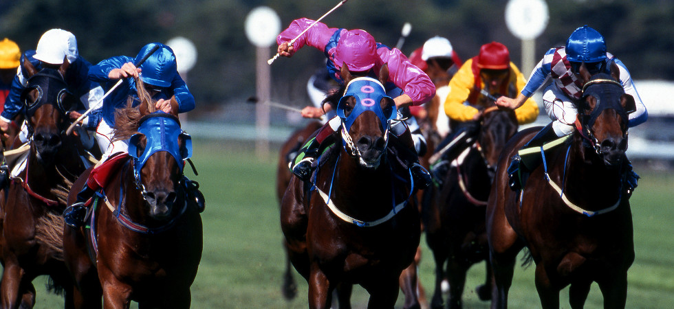 Betting on horse racing uk free arbitrage betting calculator paddy