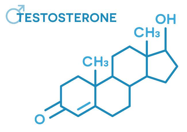 Testosterone hormones molecular formula. Sex hormone symbol