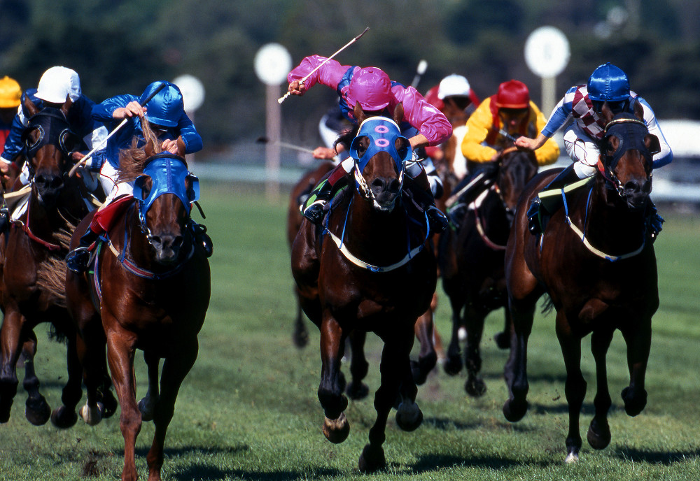 The best Boxing Day horse racing meetings to enjoy this year