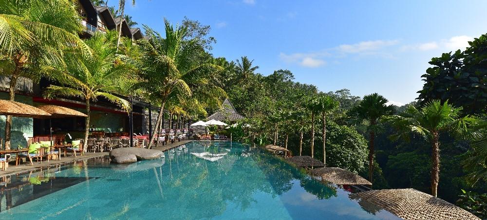 JungleFish-Pool-Bar-Chapung-Sebali