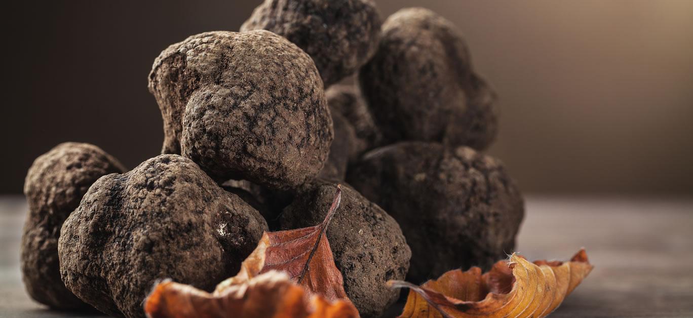 sports betting truffe