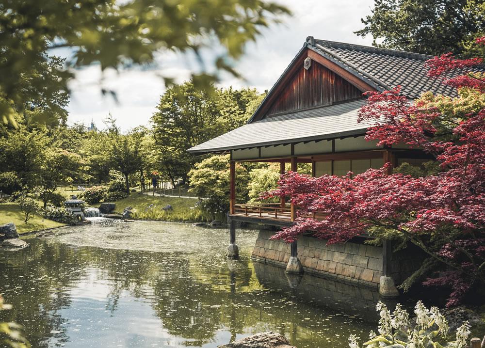 Top four garden design themes for an enchanting garden makeover