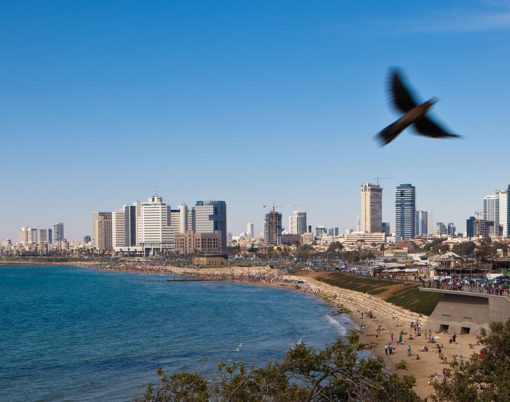 Tel Aviv courtesy Dana Friedlander for the Israeli Ministry of Tourism