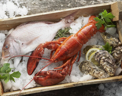 lobster fish box