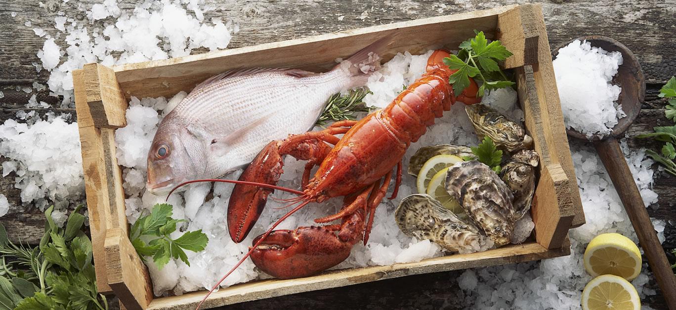 lobster fish box