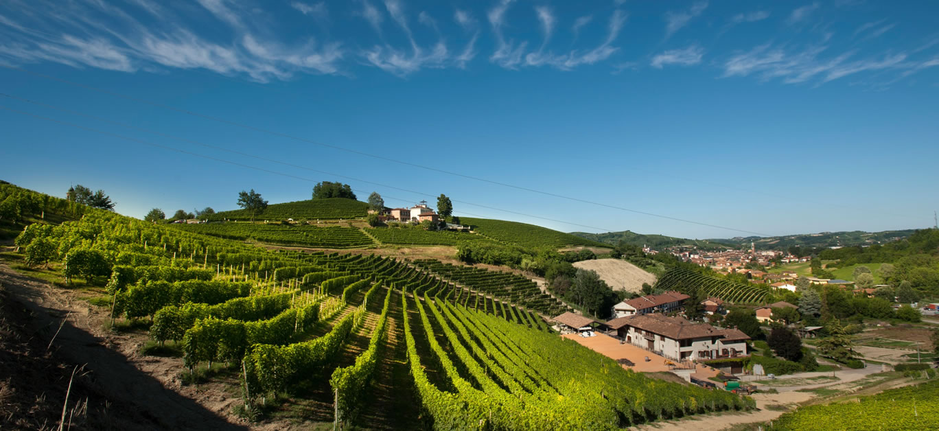 Vineyards of Malvirà on the Trinità hill in Roero, Piedmont