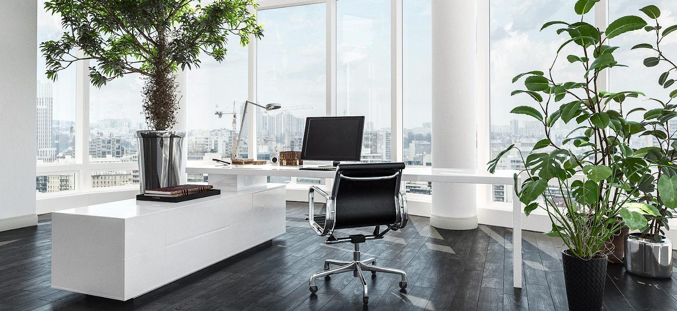 plants office