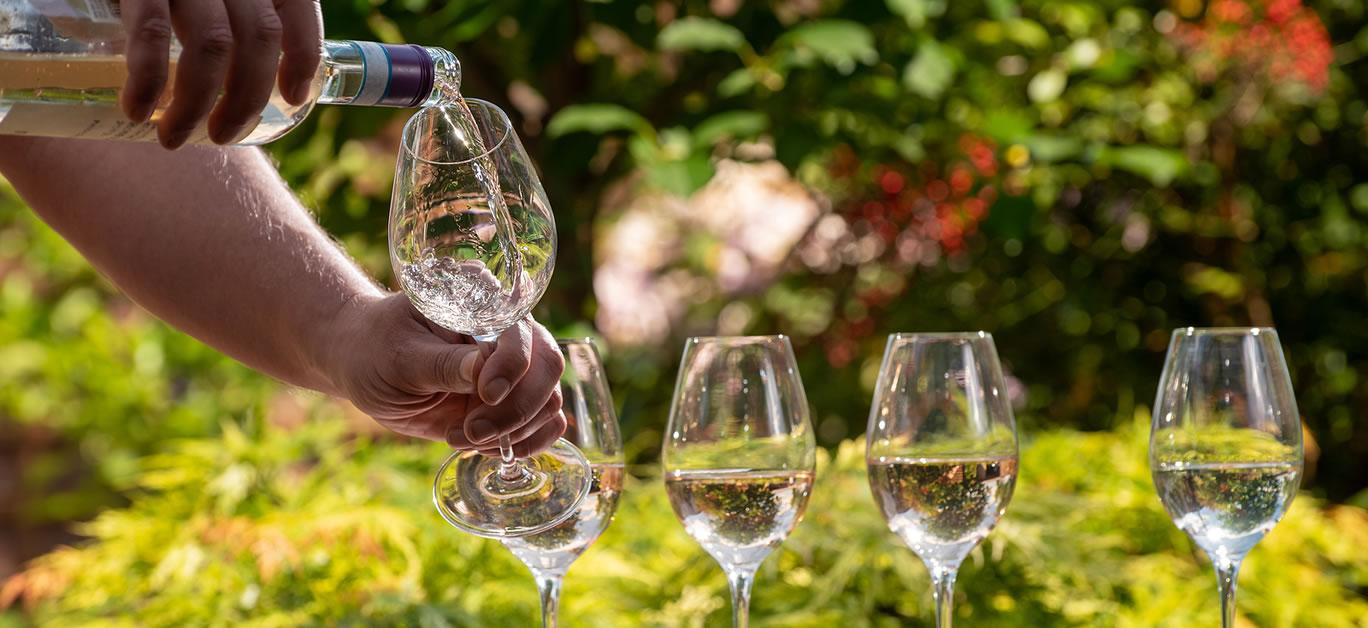 bigstock-Pouring-Of-Pinot-Gridgio-Rose--372458119
