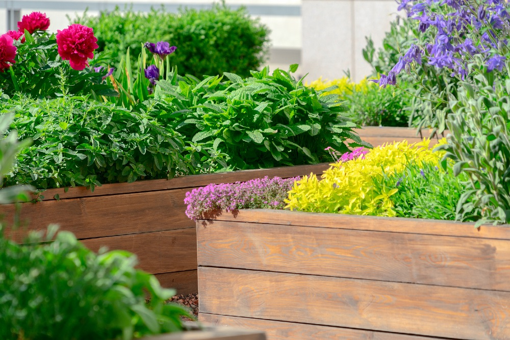 Raised flower beds in the gardens.