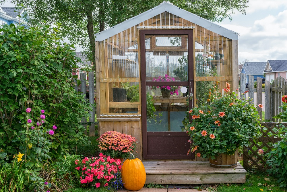 A garden shed surrounded by flowers in the garden